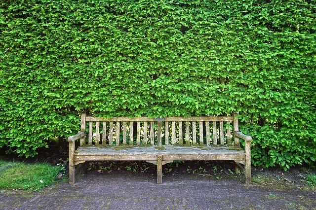 banc en bois, banc, siège