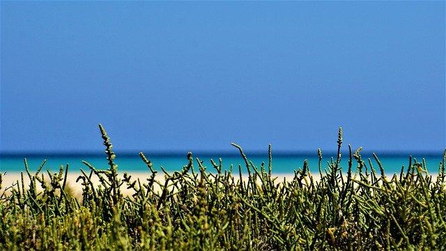 plage, ocean, mer