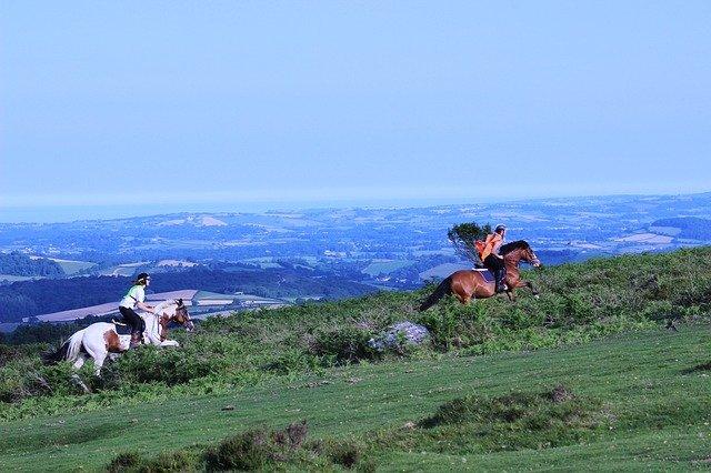 randonnées à cheval, devon, dartmoor